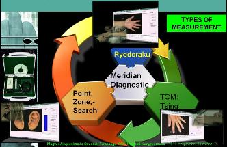 Meridian Diagnostic